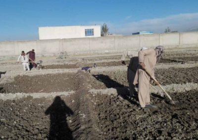 raesf-travail-sol-diguettes-afghanistan
