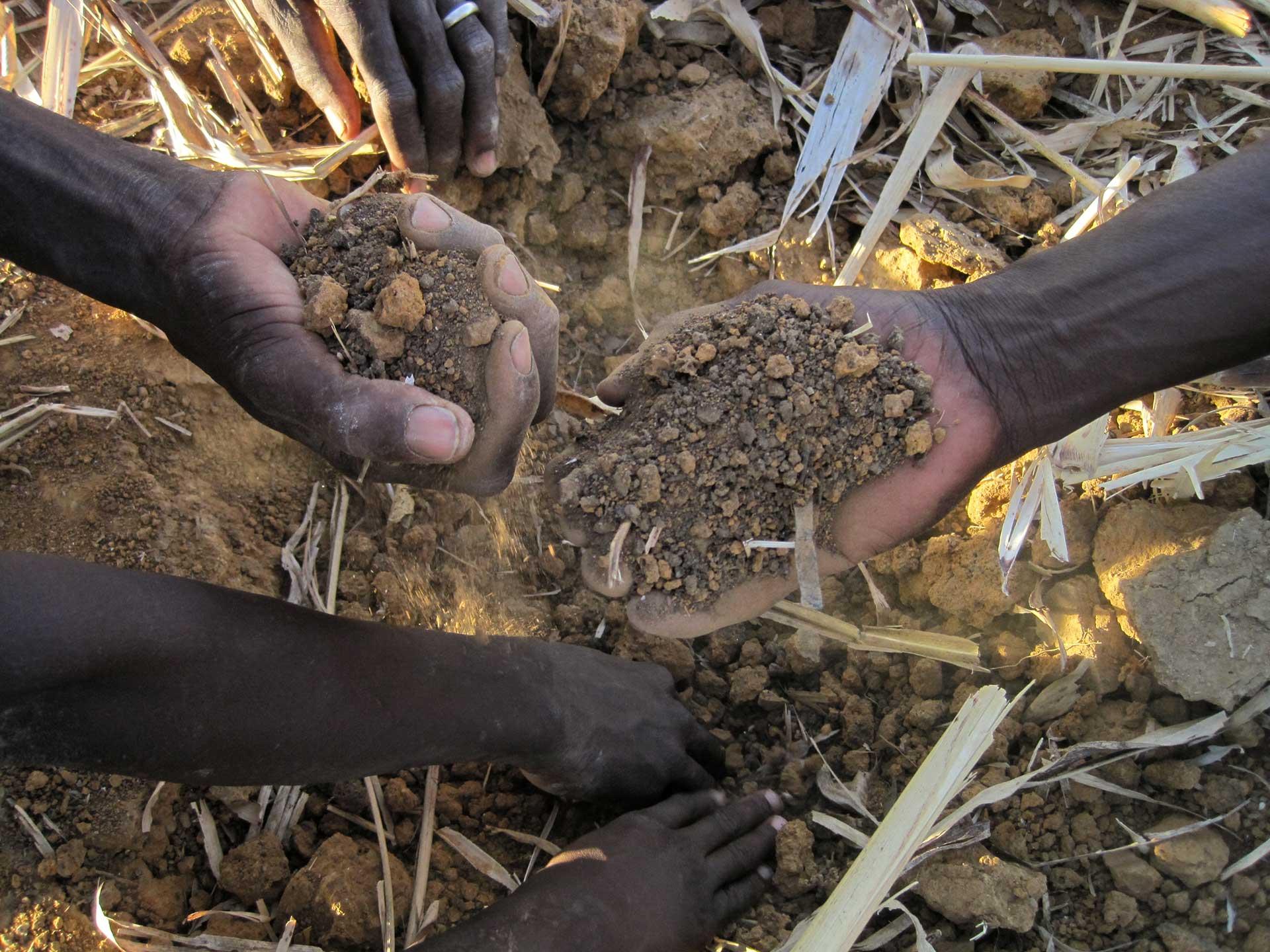 mains terre agroécologie
