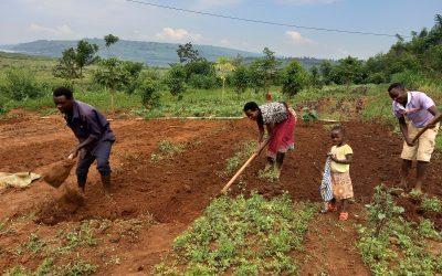 Rwanda – deuxième mission