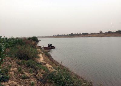Photo d'une culture de maïs au bord du fleuve Sénégal